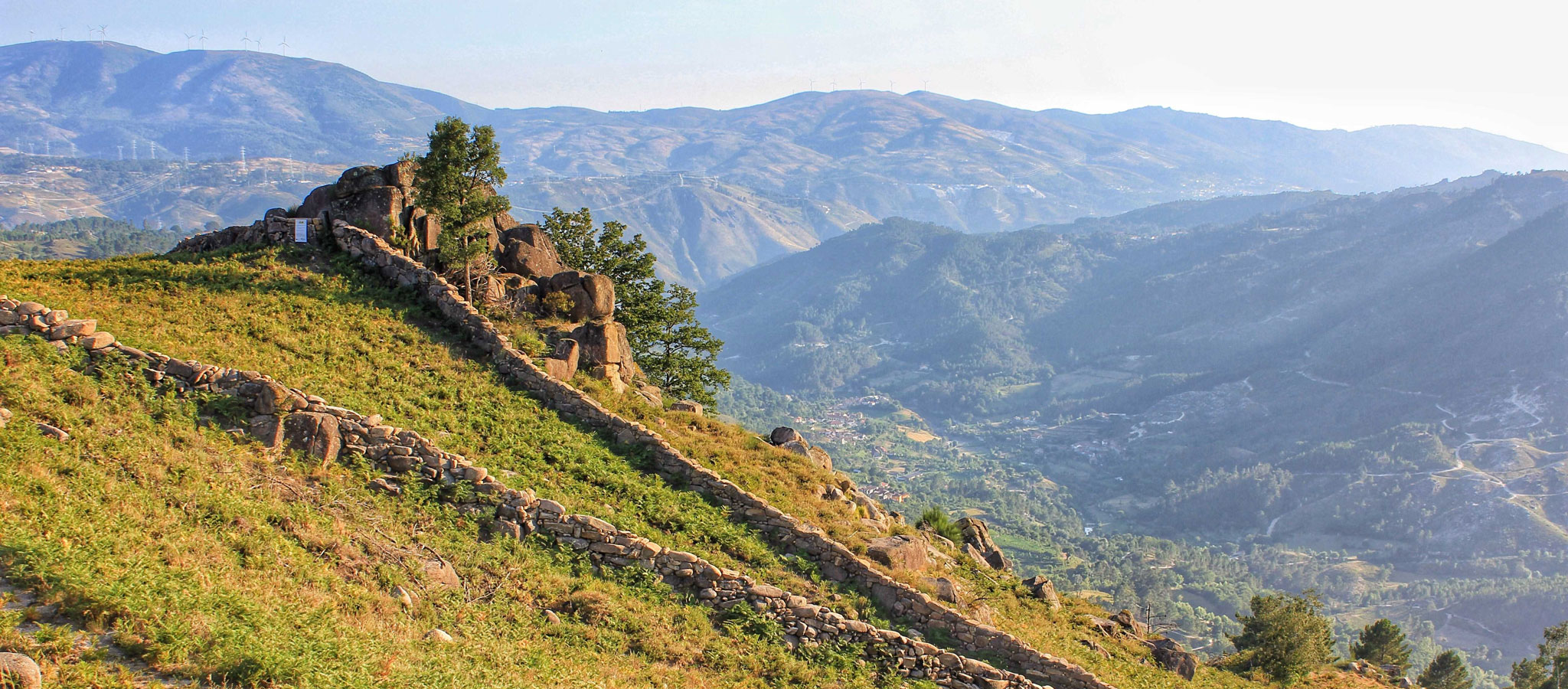 Caminos Lobos